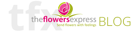 The Flowers Express Philippines